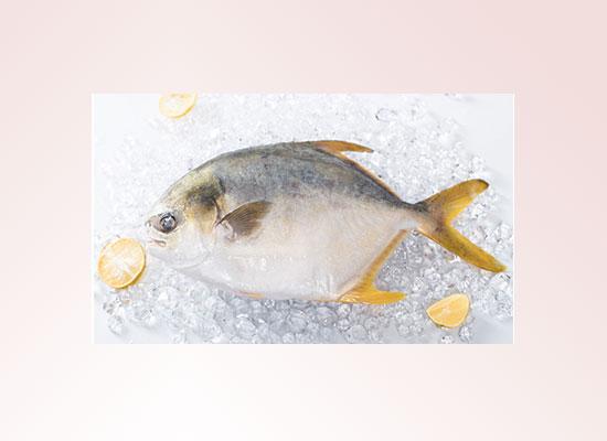 蔡氏水产以品质求发展,打造健康水产品!