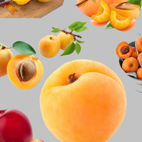 胜华罐头食品坚持为客户提供优良的品质和多样化的产品!