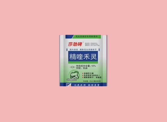 郑州华易食品公司坚持为消费者提供满意的食品
