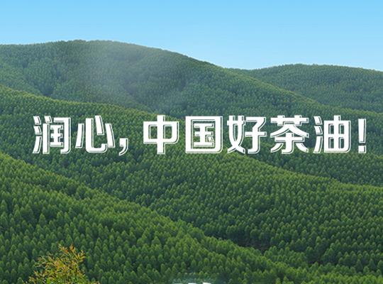 润心致力于做中国好茶油,认准低温榨取营养才高!