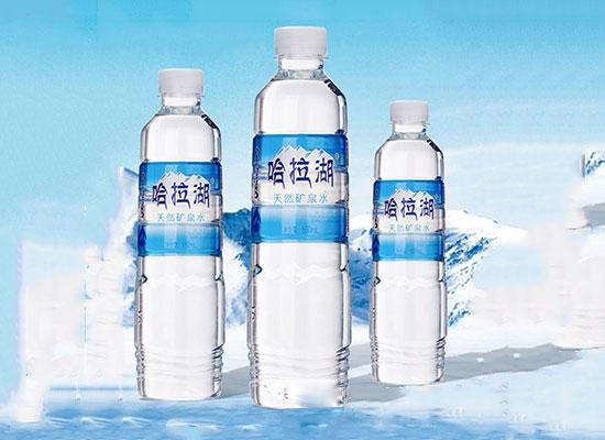 复合型优质天然矿泉水,必须得选雪源雪醇食品