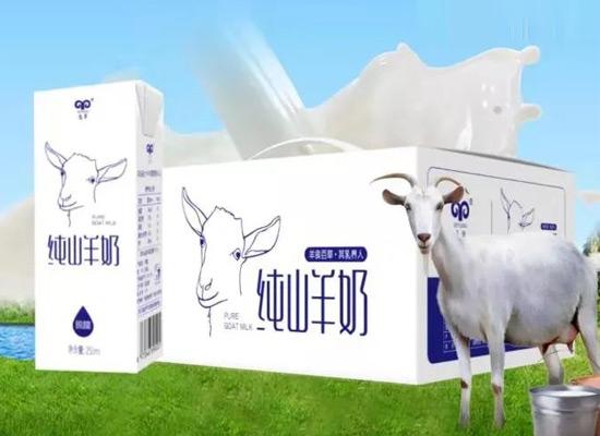 乳品新宠强势来袭!九羊纯山羊奶能扰动牛奶在市场上的地位吗?