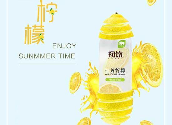 """""""一片柠檬""""风靡饮品圈,2019经销商掘金之选"""