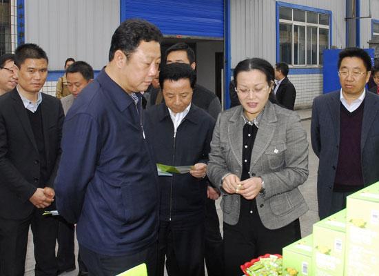 川省曲木史哈省长、省政协主席晏永和莅临我公司指导工作