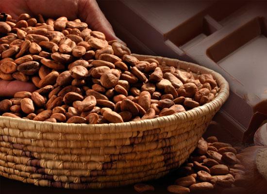 代可可脂巧克力有哪些营养价值?为你揭晓它的营养真相