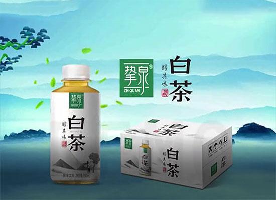 挚泉白茶坚持原叶萃取,用品质征服茶饮料市场
