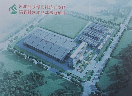 石家庄市委书记孙瑞彬、市长王亮莅临河北稻香村食品产业基地项目观摩指导