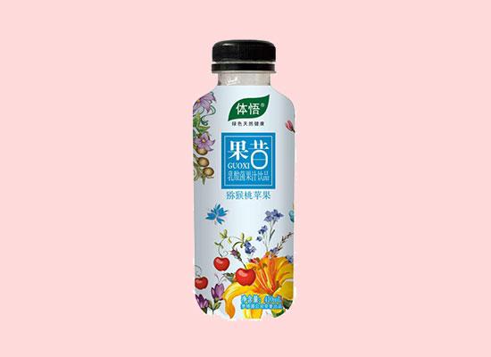体悟果昔猕猴桃苹果乳酸菌果汁,美味来袭,享受乳酸菌果汁的美感盛宴