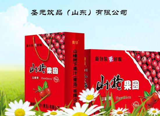 青银山楂果园山楂汁饮料,精选优质原料,高品质更美味