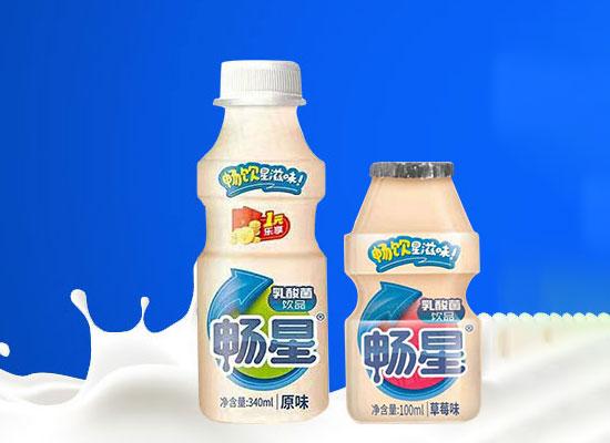 畅星乳酸菌饮品,深受消费青睐,销量火爆