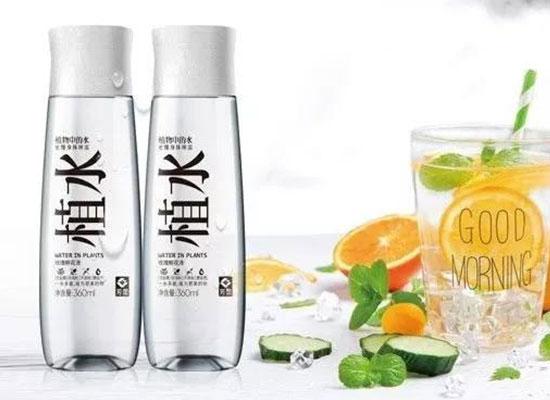 清爽柔和的植水,为何你能喝出不同的味道