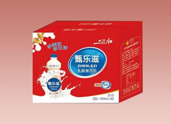 甄乐滋乳酸菌饮品,品质为先,利润在手,动销无压力