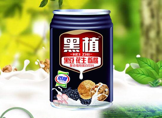 黑植复合植物蛋白饮料,三种谷物融合,给你丰富营养和口感
