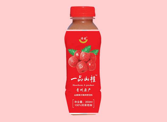 浩园一品山楂饮料,酸甜可口,美味营养,风靡市场
