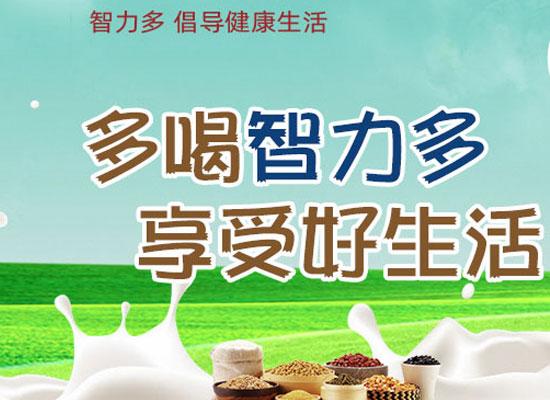智力多酸奶,市场潜力巨大,期待与你共同掘金