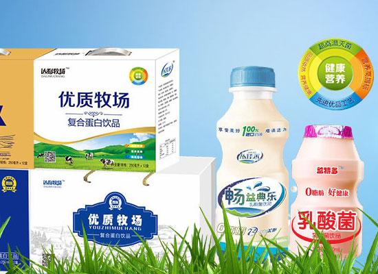 益特多乳酸菌饮品,品质出众,市场动销火爆