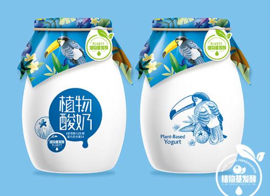 安徽致养植物酸奶,品质佳,未来发展可期