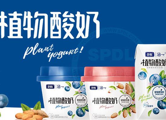 圣牧植物酸奶,市场定位准确,您不可错过的实力产品