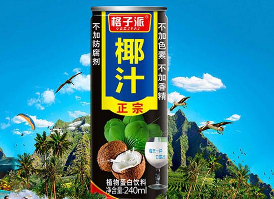 格子派椰汁飲料,不容錯過的熱銷爆品