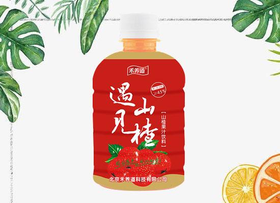 禾养道山楂汁饮料,高品质高颜值,销量火爆