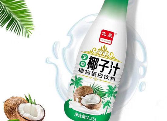 飞凰生榨椰子汁饮料,用品质说话,畅销终端市场