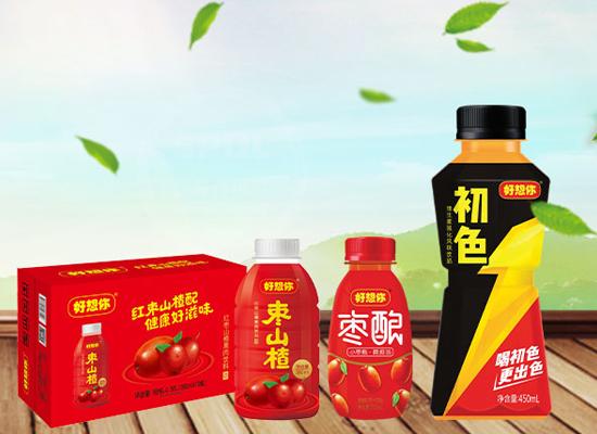 好想你枣山楂果肉饮料,简约时尚大方,馈赠亲友的佳品!