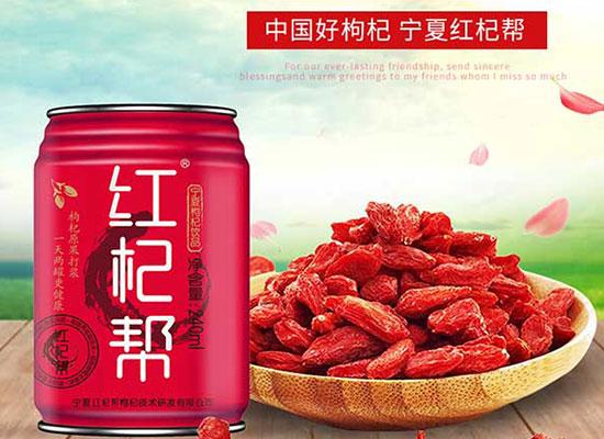 红杞帮宁夏枸杞汁饮品,无添加更健康