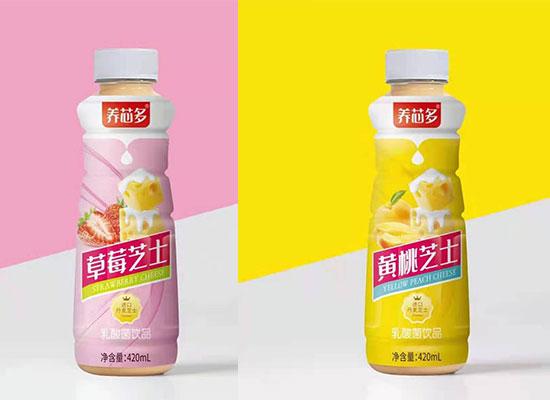 养芯多芝士乳酸菌饮品,细节决定品质的优质产品