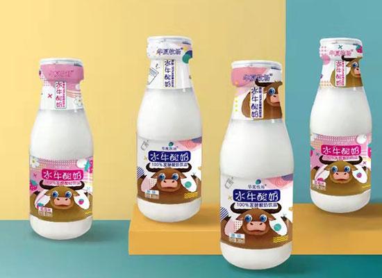 华夏牧场水牛酸奶,独特发酵的酸奶饮品