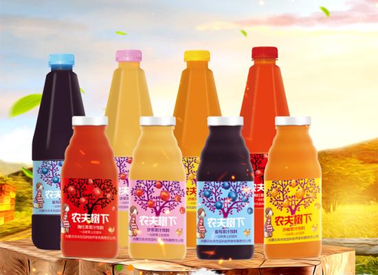 农夫树下果汁饮料,五种不同口味,畅销果汁市场!