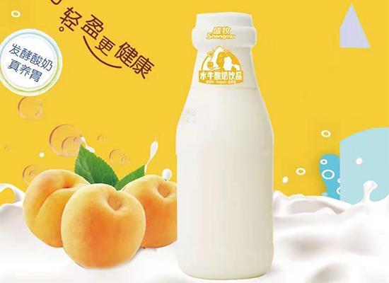 重磅推新!盛牧芝士奶昔、水牛酸奶饮品惊艳上市!