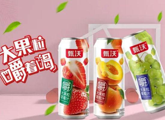 大果粒果汁,凭实力抢占市场,经销商争先代理!