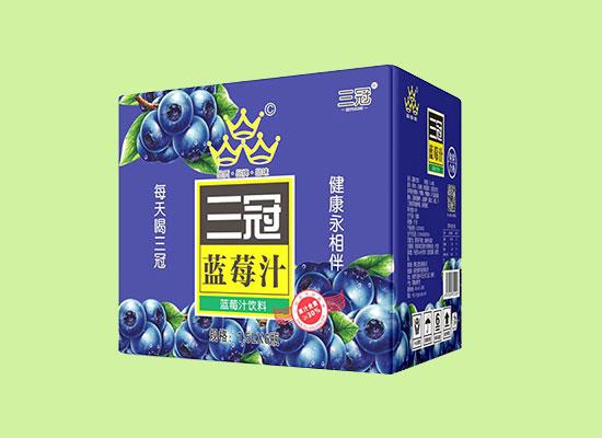 珍趣苏打果味饮料,口味独特,畅销饮料市场!