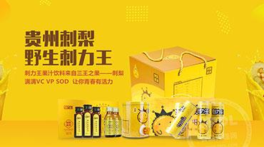貴州宏財刺力營銷有限責任公司